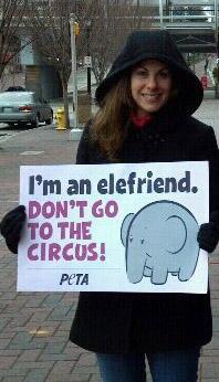 animal activist stacey