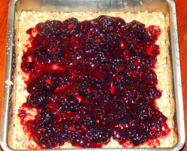 Blackberry Crumble Fruit Layer