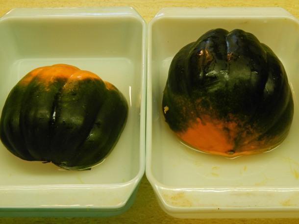 acorn squash in pans