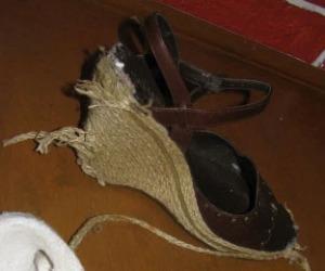 Chewed Shoe 2