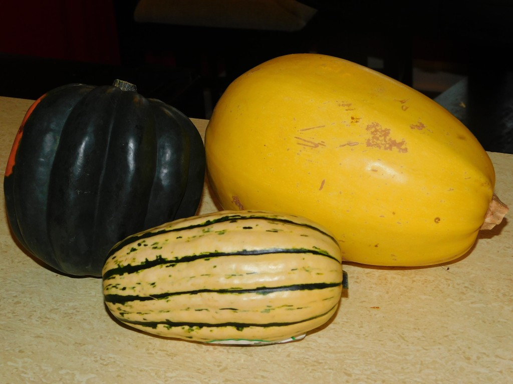 Trader Joe's Winter Squash